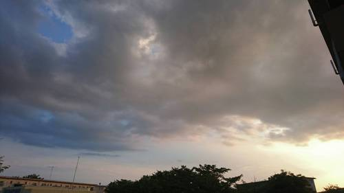 2017-07-07T08:38:25.JPG