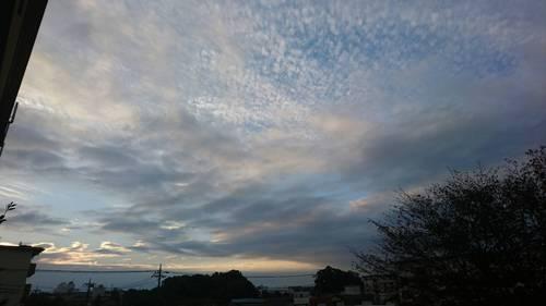 2017-11-03T09:06:10.JPG