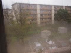 10時頃は雨風が多少ありましたが.jpg