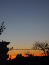 1美しい朝 忙しい一日が始まります.jpg
