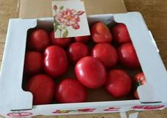 ?の匂いのトマトがtomatoさんから♪.jpg