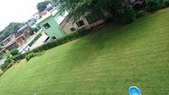 ありがたいよね~芝刈りしたから涼しげ~.jpg