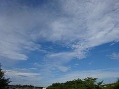 あ~秋空です.jpg