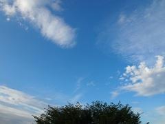 いろんな種類の雲が覆い出してきました.jpg