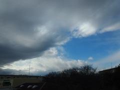 お昼近くに風が出てきて変な空模様に.jpg