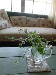 お花を摘んでアンティークのミルク入れにさしました.jpg