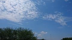 お!雲の形が・・・・.jpg