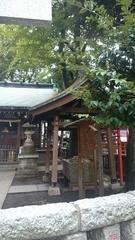 こじんまりとした良い神社です.jpg