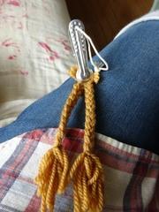 こんな風にすると三つ編みがしやすい.jpg