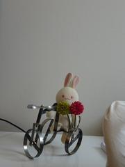 たいせい作 自転車.jpg
