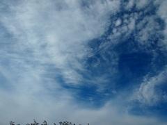 なんか 女に人に見える雲だな~.jpg