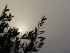 まるで月の様な太陽.jpg