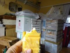 アイスを食べて作業開始.jpg