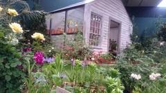 ターシャさんの庭6.jpg