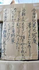 ツヤ姉の手紙 可笑しい♪.jpg