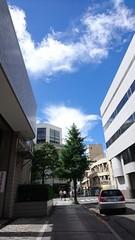 トワル・ド・ジュイ展を見て外に出たら青空.jpg