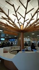 バスターミナル 便利になりました.jpg