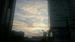 ビルの谷間に夕日が沈みます.jpg