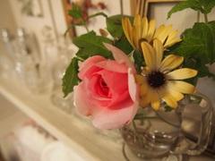 ベランダの花やグリーン.jpg