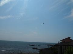 ランチを食べに海沿いのレストランへ.jpg