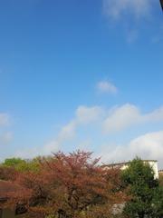 ワンダフルな天気です.jpg