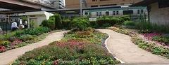 上尾駅前の花壇.jpg