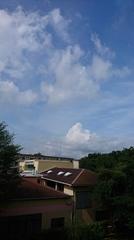 久し振りの朝からの青空.jpg