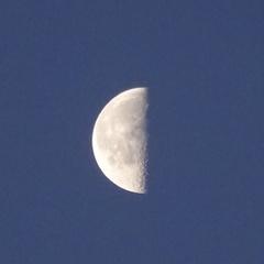 今朝の月 真半分.jpg