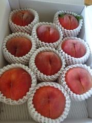 仙台のお客様から福島の桃が届きました♪.jpg