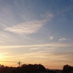 優しい朝-2.jpg