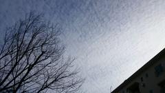 凄い雲~何だか寒くなりそう.jpg