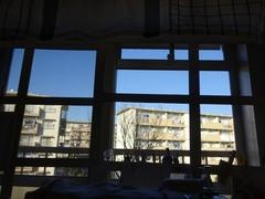 午前中は仕事部屋の窓ガラスを磨いて.jpg