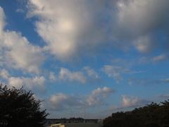 午後から曇るという 雲多いもんね~.jpg