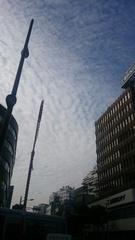 午後から雲が出てきましたが わりと温かな一日で.jpg