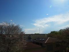 午後3時 風が強い!!.jpg