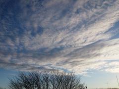 午後4時の空 寒さが雲で分かります(笑).jpg