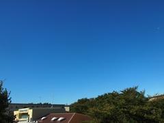 台風一過の青空でした.jpg