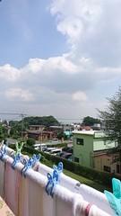 夏ですね 入道雲が.jpg