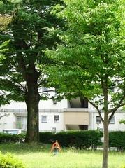 夏草の中の遊具 ポツネンと.jpg