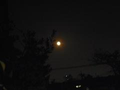 夕べの月はオレンジ色でした.jpg