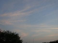夕方の空 色優しくて.jpg