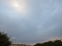 夕方4時半ごろ雨は上がって.jpg