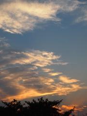夕方5時 穏やかな夕暮れです.jpg