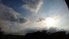 夕陽がまぶしい.jpg