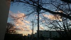 夕陽に染まる雲 綺麗だな~寒いけど(笑).jpg