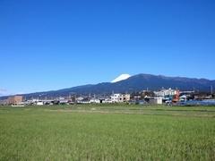 姉の散歩コースから見える富士山.jpg