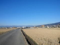 姉の散歩道.jpg
