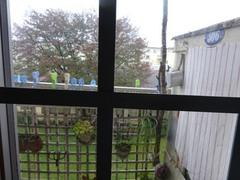 寒い一日雨が降って.jpg