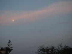後少しで満月に.jpg
