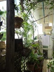 日除けカーテンをして植木の手入れ.jpg